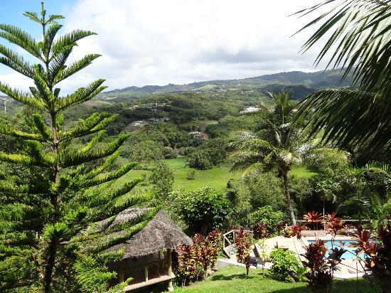 Marjorie's Kauai Inn: A shot from a balcony.