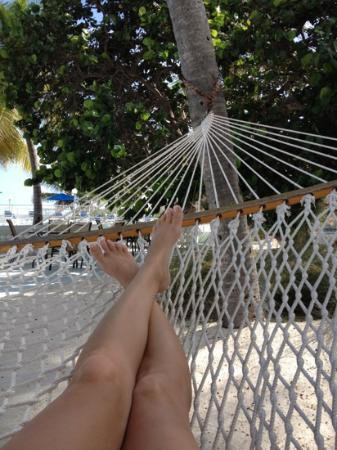 Pines and Palms Resort: hammock