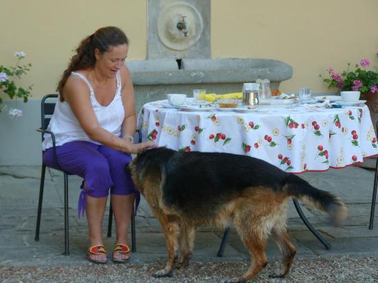 Agriturismo Montereggi: Bon petit dej servi dehors et sur une belle table :o)