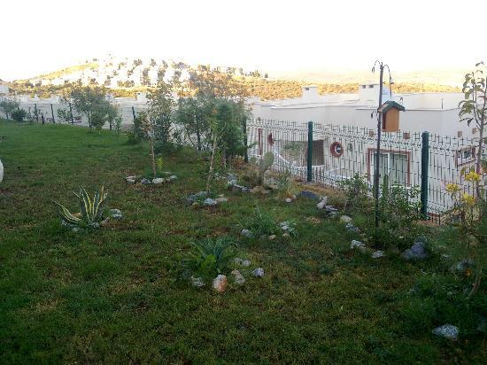 Lakeside Garden Holiday Village : Terrasse