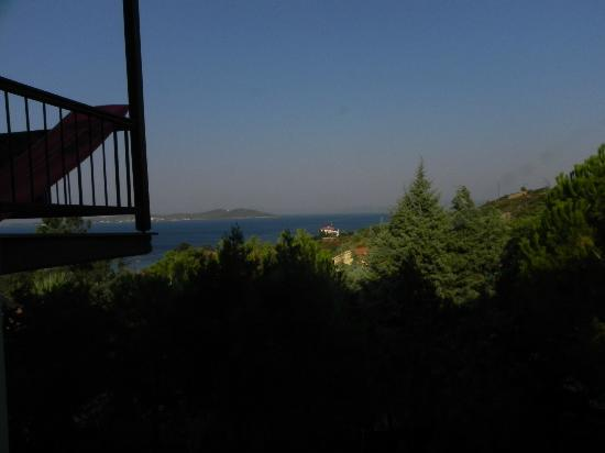 Aristoteles Beach Hotel : View when you go out from the room