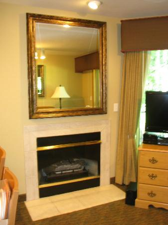 Whispering Woods Resort: Fireplace