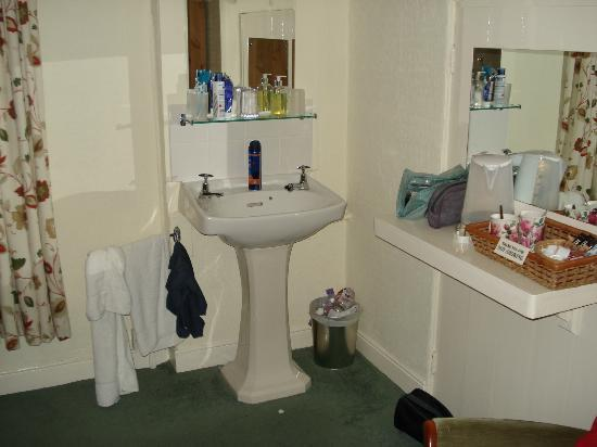 Gyllyngvase House Hotel : Sink on other side of bedroom to toilet