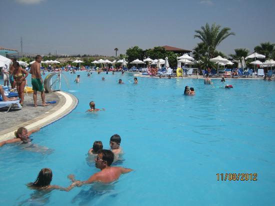 Avanti Holiday Village : Pool area