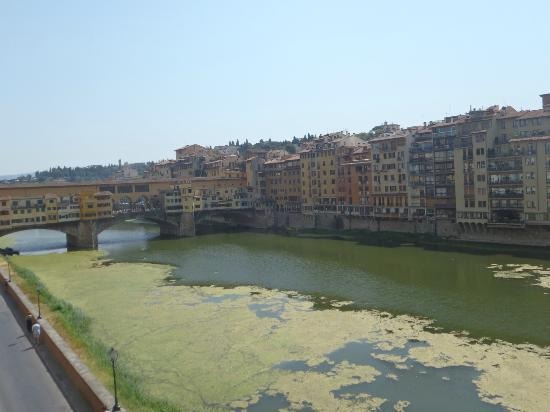 Hotel Berchielli: View from our room