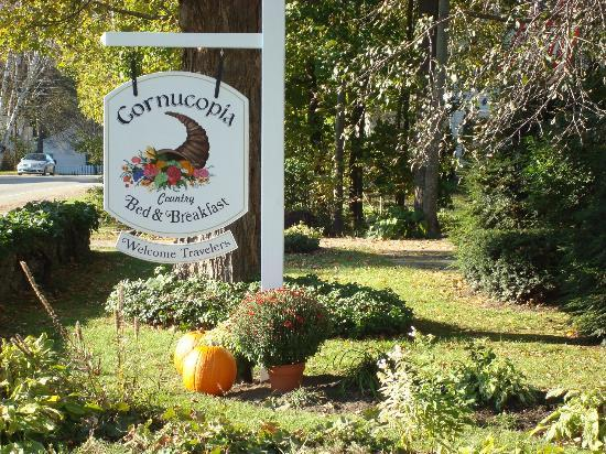 The Cornucopia Bed & Breakfast: WELCOME!