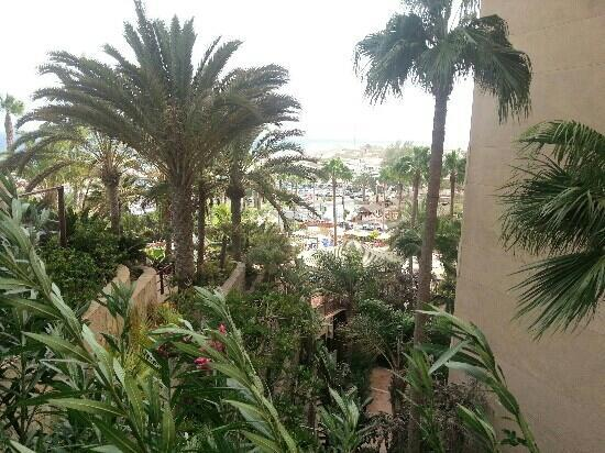 Corallium Dunamar By Lopesan Hotels : palme dal ristorante