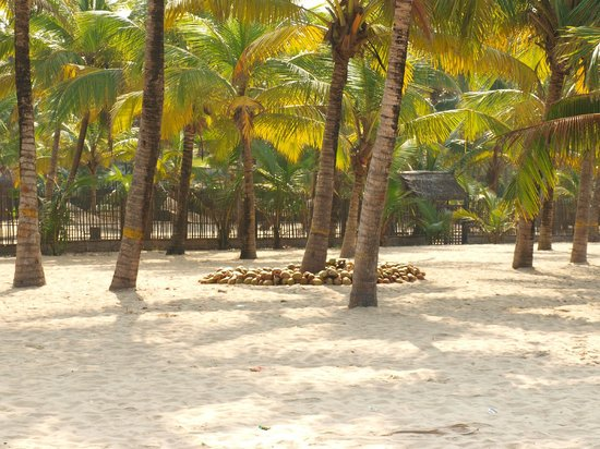 Marari Beach Mararikulam 2018 What To Know Before You Go With Photos Tripadvisor