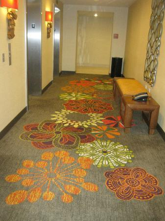 Embassy Suites by Hilton Houston Downtown: Hallway