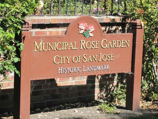 Municipal Rose Garden San Jose Ca Top Tips Before You