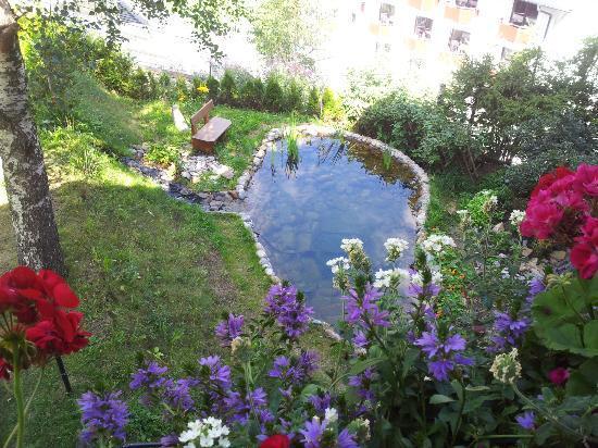 Gastehaus Waldesrand: little lake beneath the hotel