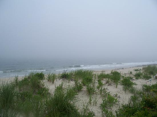 Mantoloking, Nueva Jersey: Lovely dunes peek over the Atlantic