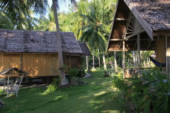 Island Retreat : Vista de alrededores de las habitaciones