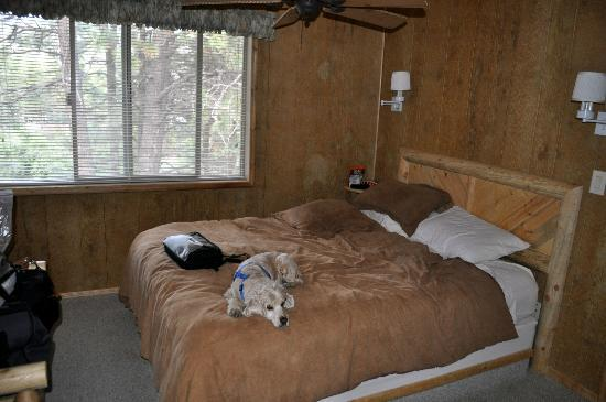 Delightful Hualapai Mountain Resort: The Bedroom, Dog Not Included