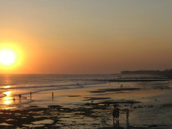 Adhi Jaya Hotel: Beach