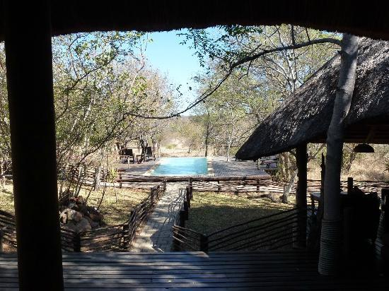 ‪‪Toro Yaka Bush Lodge‬: Pool