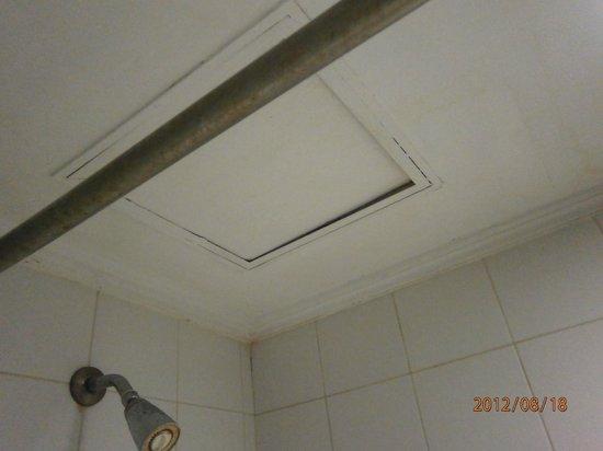 โรงแรมบาตาเวีย: The roof inside the bathroom .... what is this man ?? someone or something there ???creapyyyy