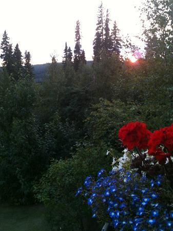 A Moose in the Garden Bed & Breakfast: Western view from deck