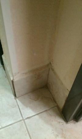 Holiday Inn Express Hotel & Suites: Dirt and stains in the entry way