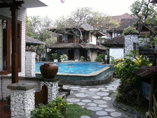 Balisani Padma: view of pool