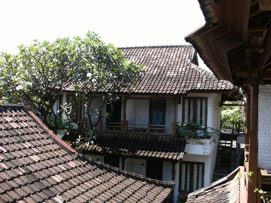 Balisani Padma: view from room