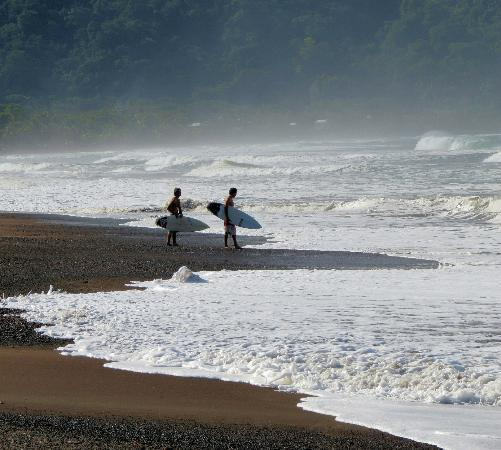 Copacabana Hotel & Suites: Surfers in early morning entering ocean near hotel - Jaco Beach