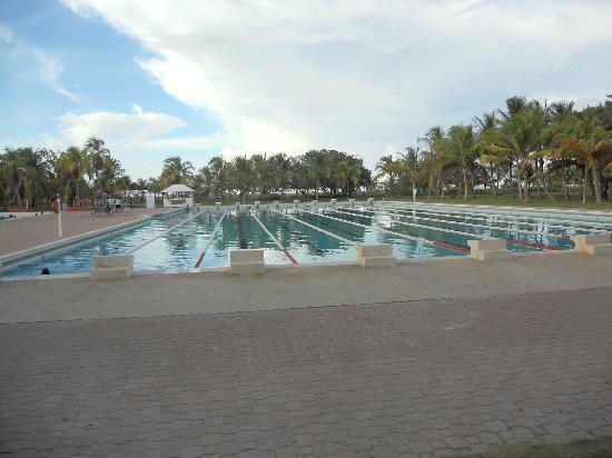 Laguna Mar: Olympic Pool