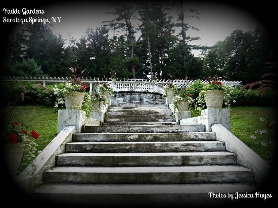 Yaddo Gardens: Stairs to Rock Garden