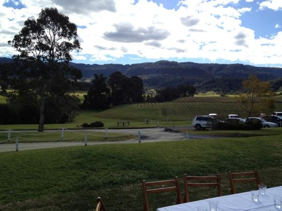 Silos Estate: the vista from silos cellar door