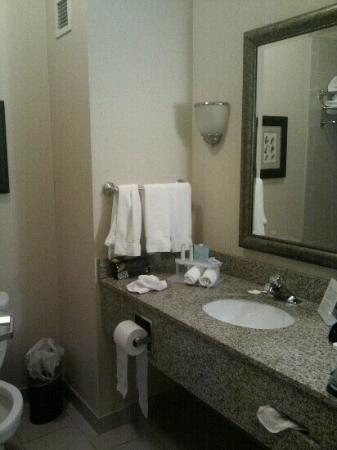 Holiday Inn Express Hotel & Suites Fairbanks: baño