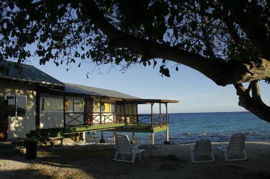 Turiroa Village: View of the dorm