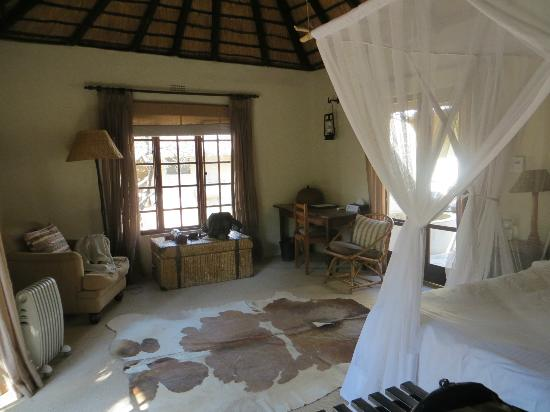 Motswari Private Game Reserve: Leopard room