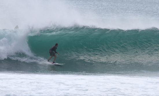 Padang Padang Surf Camp: padang padang surf