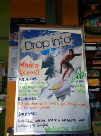 Casa Oro: Info surf