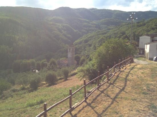 Agriturismo Barbicaio: the view from the pool, early morning