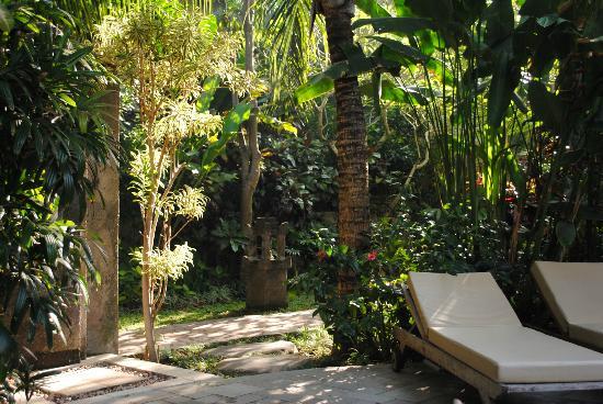 โรงแรมคูมาลาพันไท: New pool lounge cushions at KP