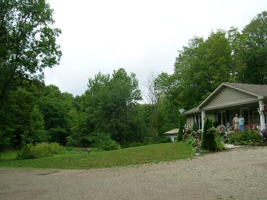 Maple Acres B&B: the yard