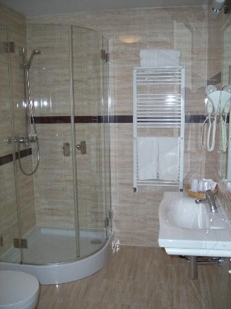 1231 Hotel : Bagno