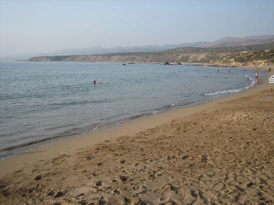 Lara Bay Turtle Conservation Station : beautiful sandy beach