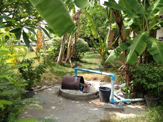 """Chaweng Villa Beach Resort: """"garden view"""""""