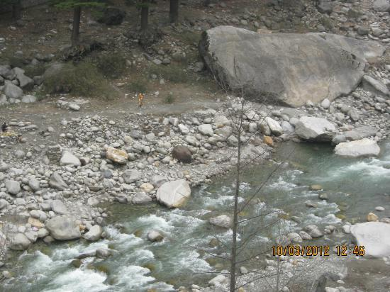 Lords Residency: River and Outing