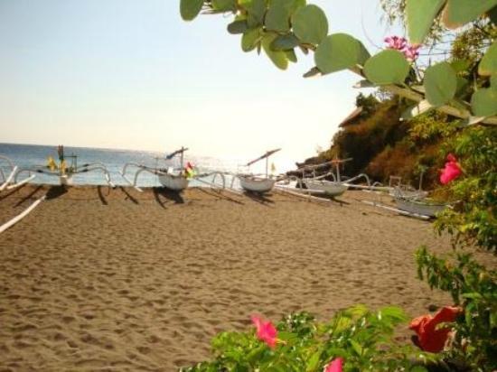 Palm Garden Amed Beach & Spa Resort: view from the garden