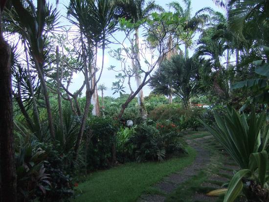 Hotel Au 'Ti Sucrier: Jardin, Vue de la terrasse