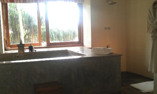 Aditya: Private plunge pool