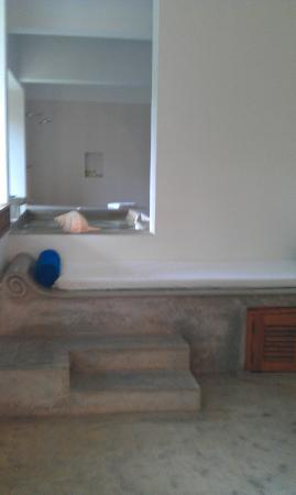 Aditya: Private plunge pool from the living room area