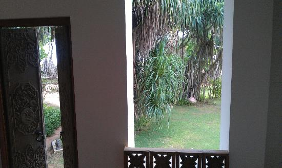 Aditya: View from bathroom