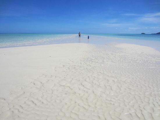 Malolo Island Resort: Malolo sand bar - optional snorkelling activity