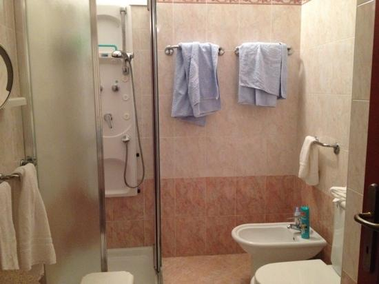 """Hotel Napoleon : bagno con """"teli piscina"""",sempre forniti al posto del normale asciugamano doccia"""