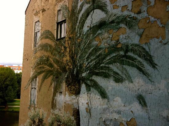 Seehof Hotel : view on a palmtree :-)