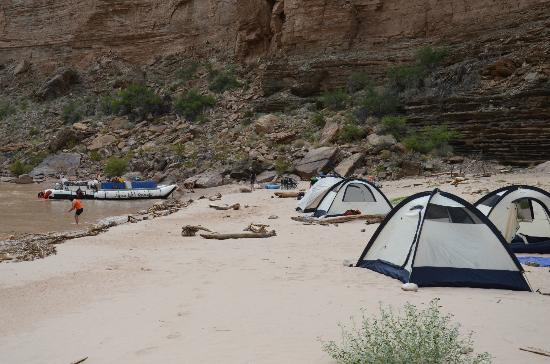Arizona Raft Adventures: Our camp site at Fern Glen, Mile 168
